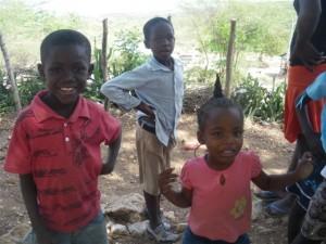 Haiti2012allareas483
